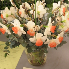 Narcissus-Pink-Charme-_-Van-der-Slot-Lisse-336